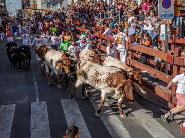 El sexto y último encierro de San Sebastián de los Reyes
