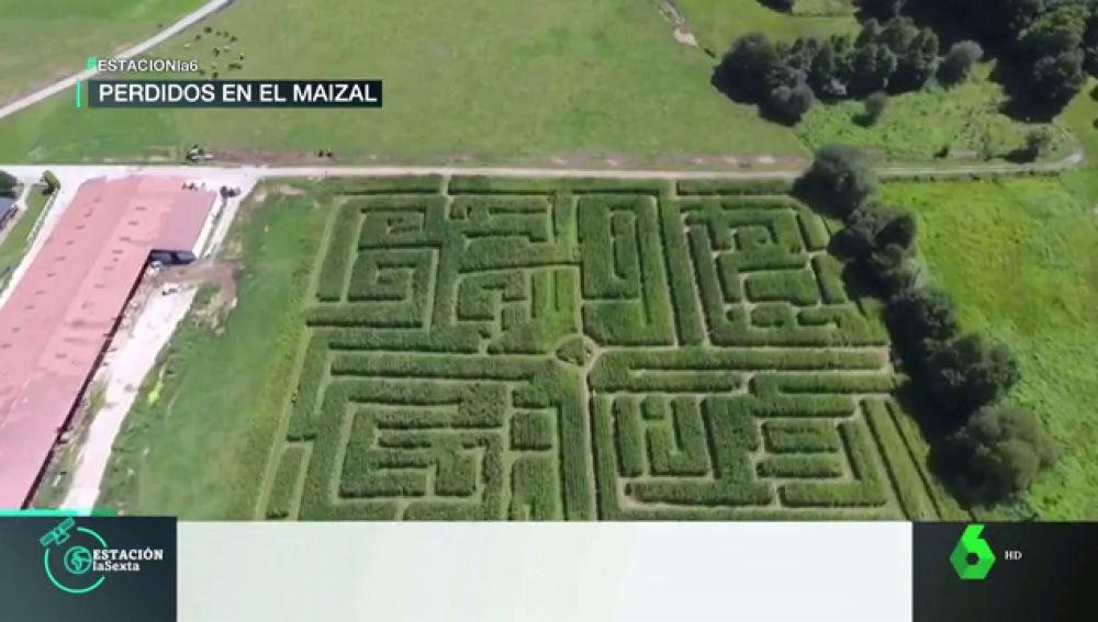 Así es el gigantesco laberinto de maíz de Cantabria: un lugar para perderse en plena naturaleza