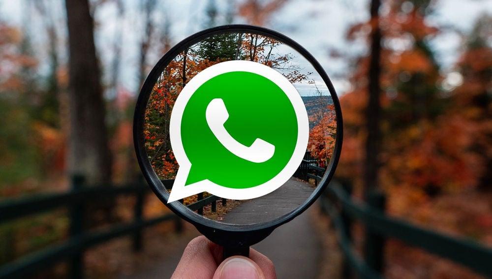 Búsqueda de WhatsApp
