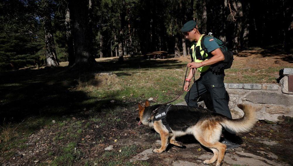 Agentes de la Guardia Civil trabajan en la búsqueda de la esquiadora