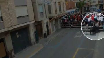 Muere un hombre de 69 años tras ser embestido por una vaca en Llíria, Valencia