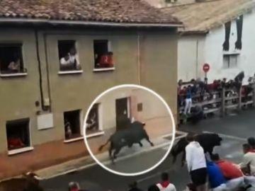 Un joven recibe una cornada en Navarra