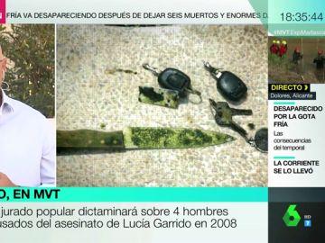 Comienza el juicio por el asesinato de Lucía Garrido en 2008: apareció muerta en la piscina de su casa