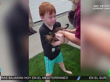La emotiva reacción de un niño de seis años al ver que sus padres le regalan un cachorro