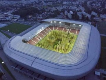 Campo de fútbol, Austria