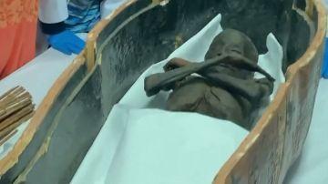Imagen de las momias trasladas a un museo de Egipto