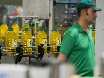 Imagen de la producción de botellas de aceite españolas.