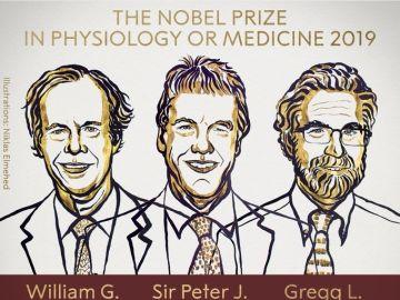 William G. Kaelin, Gregg L. Semenza y Peter J. Ratcliffe