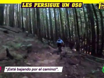 Deportes oso