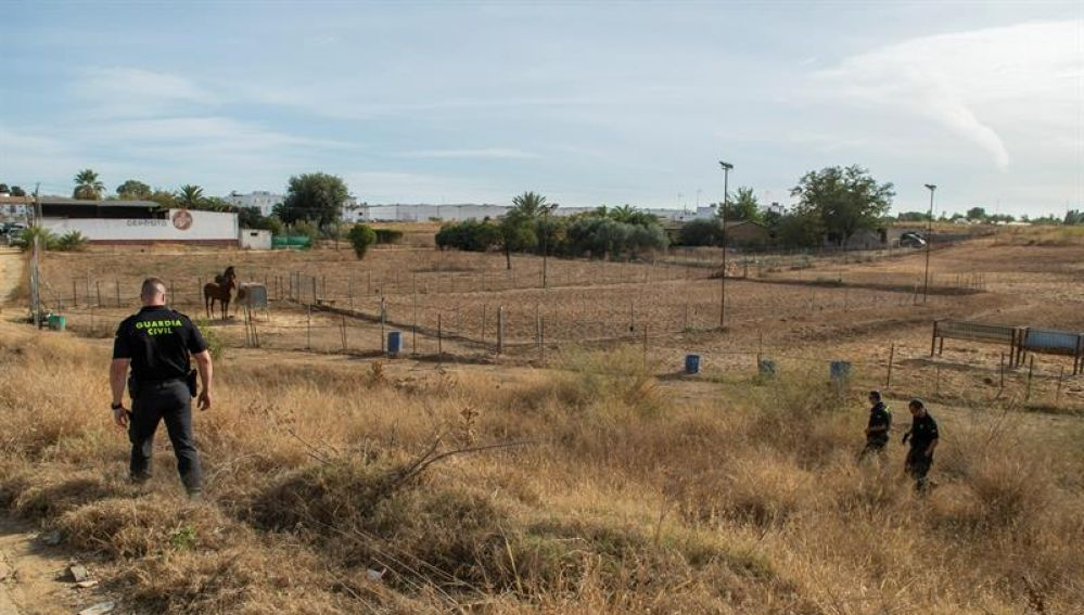 Dispositivo de búsqueda de la Guardia Civil, a las afueras de la localidad sevillana de Carmona