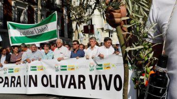 Protesta de los olivareros