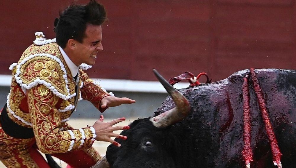 Imagen del momento de la cogida al torero Gonzalo Caballero
