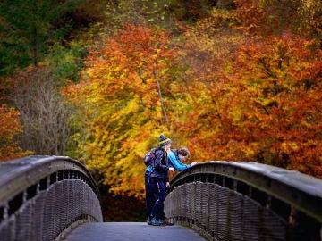 Puente Noviembre: Estos son los mejores planes para el puente de Todos los Santos
