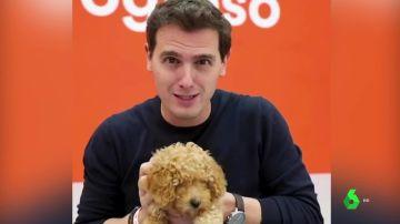Rivera con el perro Lucas
