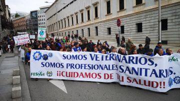 Manifestación de veterinarios en Madrid