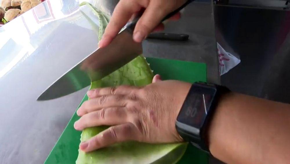 El aloe vera y su gran aporte de hierro y calcio
