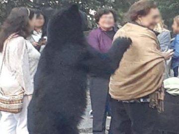 Momento en el que oso acaricia el pelo a la mujer.