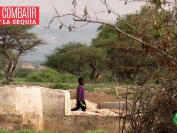 Desalinizadoras y semillas resistentes: así hace frente Somalilandia a la sequía