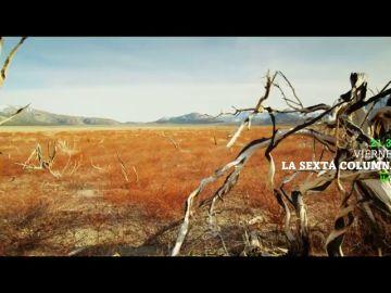 'Emergencia climática: Apocalypse Now', este viernes en laSexta Columna