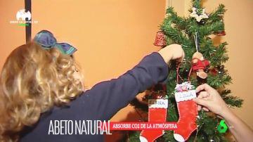 Por una Navidad sostenible: los beneficios de comprar un árbol natural para decorar tu casa