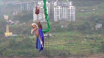 Imagen capturada del vídeo viral del momento en el que el cerdo es lanzado desde 70 metros de altura.