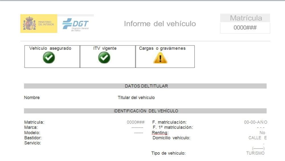Informe de vehículo