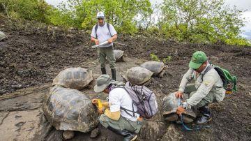 Imagen de los miembros de la expedición científica en el Parque Nacional Galápagos.