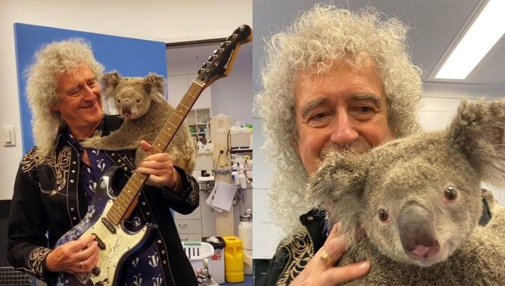 Imagen de Brain May, guitarrista de The Queen, junto al koala.