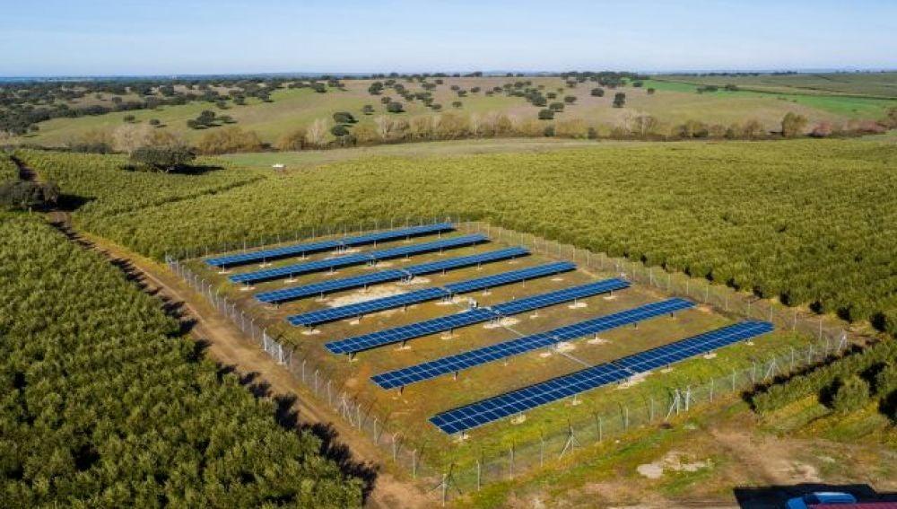Riego fotovoltaico de 140 kWp en Alter do Chao (Portugal). Fuente: MASLOWATEN