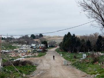 Día Mundial de la Justicia Social: ¿Cómo está el panorama en España?