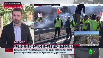 """Juan Ramón Rallo, economista: """"No hay nadie que se esté forrando a costa de pagar precios muy bajos a los agricultores"""""""