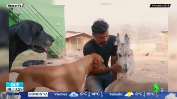 La historia de Sameer Vohra, el hombre que da hogar a más de 400 animales abandonados y maltratados en la India