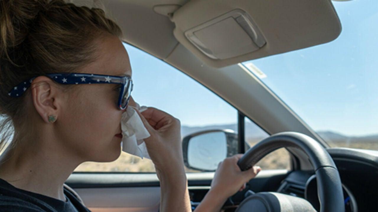 La DGT lanza un aviso a todos los conductores alérgicos