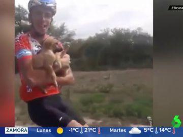 El grupo de ciclistas más aplaudido de las redes: rescatan a seis cachorros abandonados en mitad de la montaña