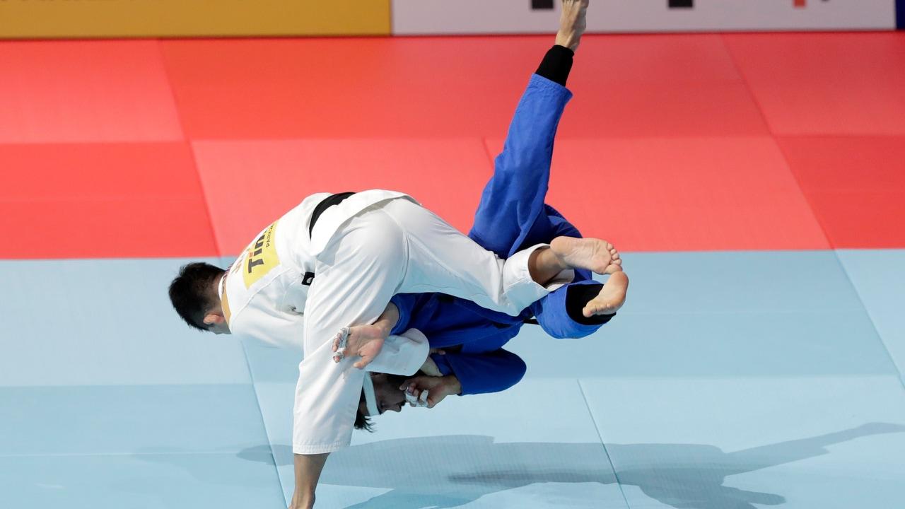 Pelea de judo