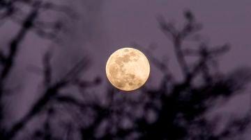 Superluna de las flores: ¿Por qué hoy la luna es tres veces más especial?