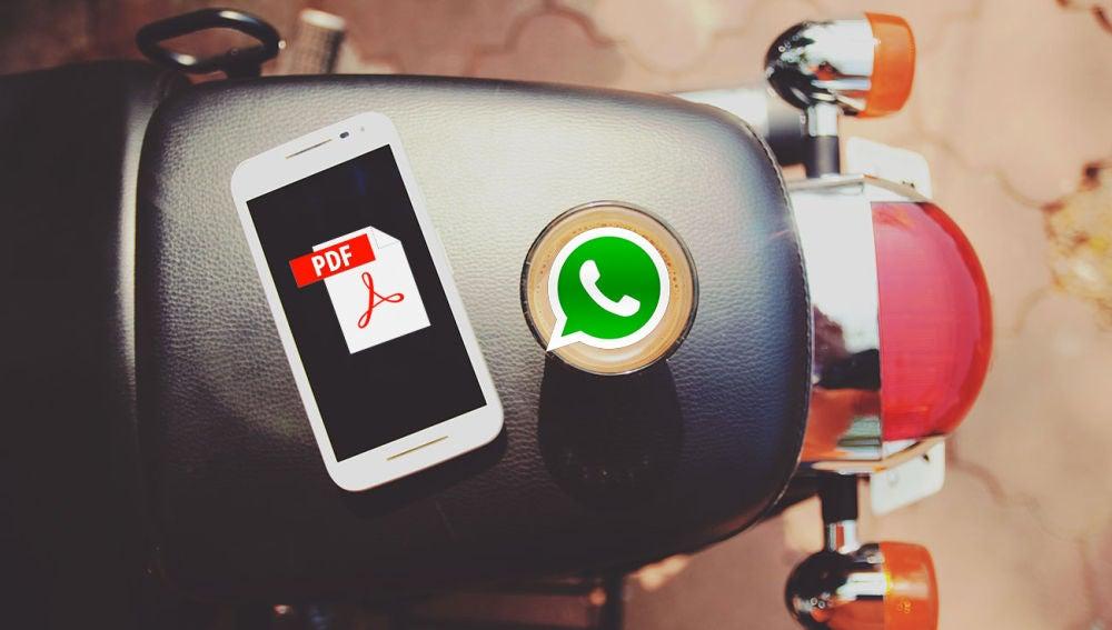 PDF y WhatsApp