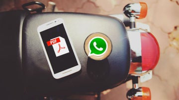 PDF y WhatsApp