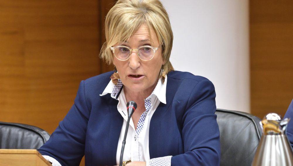 La consellera de Sanidad, Ana Barceló, actualiza los datos de coronavirus en rueda de prensa.