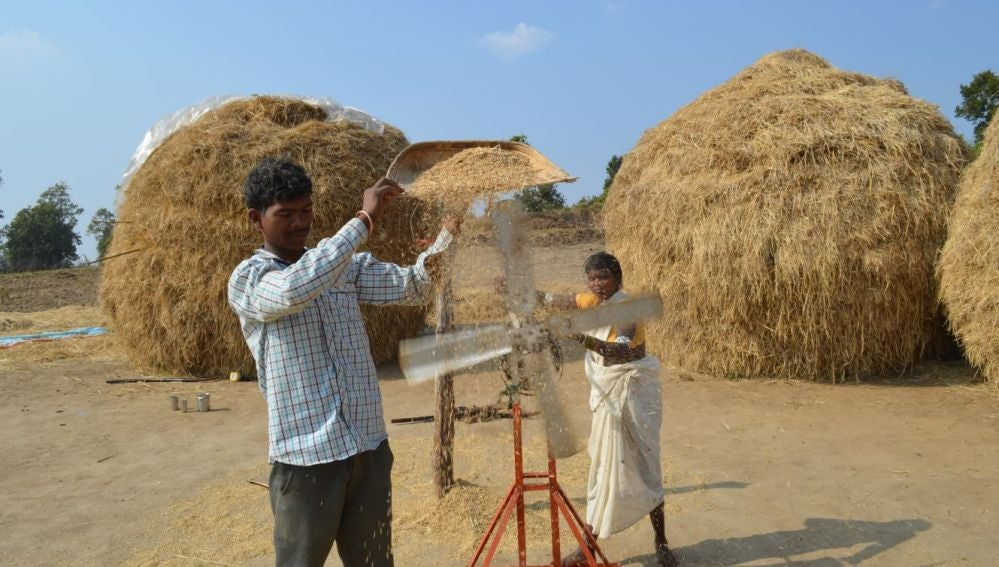Una guerra nuclear entre India y Pakistan desencadenaria una hambruna global