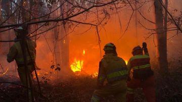 Imagen de los incendios de Cantabria