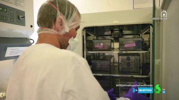 Un científico trabajando en un laboratorio de investigación.