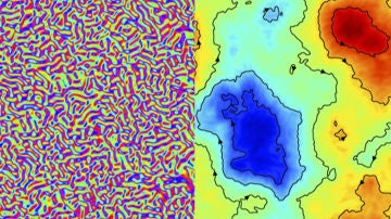 Descubiertas las propiedades universales de la turbulencia activa