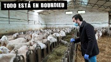 Pablo Casado durante su visita a una explotación de ovino en Valverde de Alcalá (Madrid)