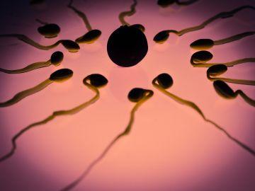 Recreación del esperma en torno a un óvulo