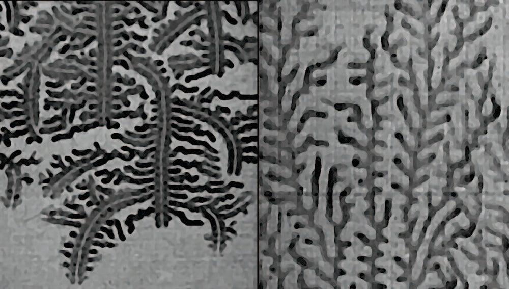 Inesperado comportamiento fractal de las llamas de hidrogeno