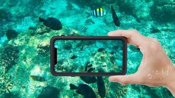 iPhone 11 en el agua