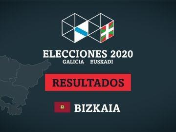 Resultados de las elecciones en Bizkaia (Vizcaya)