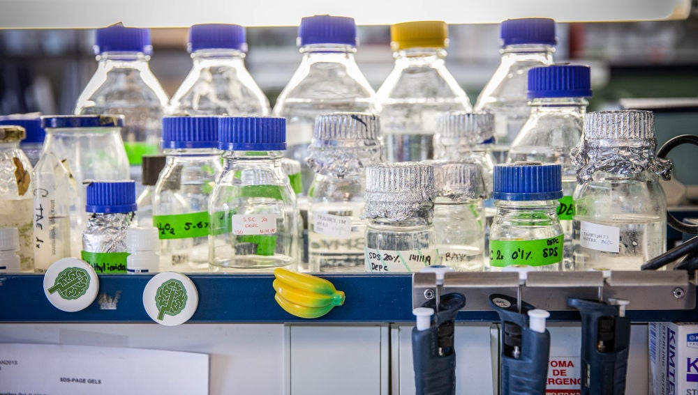 Queremos que la ciencia nos salve Demosle financiacion atencion y direccion