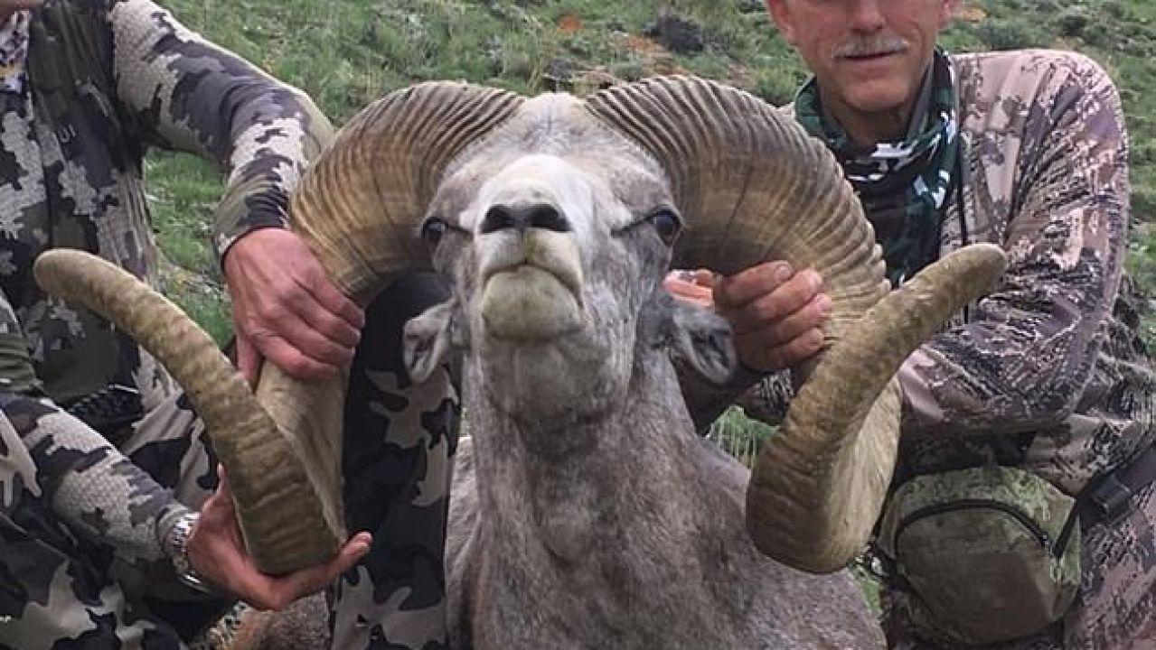 El hombre que mató al león Cecil caza a un carnero salvaje protegido en Mongolia